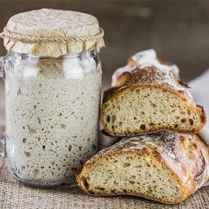 Pan nivel 1 aprende a hacer los mejores panes
