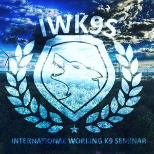 IWK9S 4