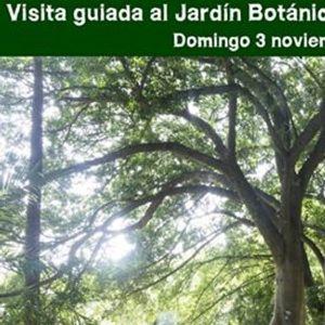 Visita guiada al Jardn Botnico-Histrico La Concepcin
