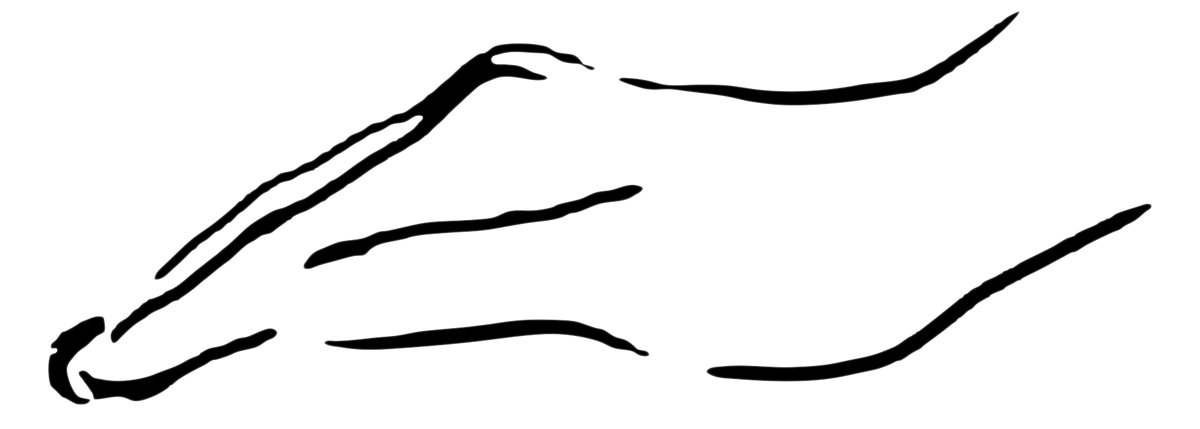 QIGONG TT (Therapeutic Touch) und Monochord