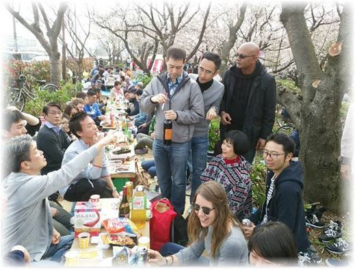 Funabashis Cherry-blossom Viewing Party