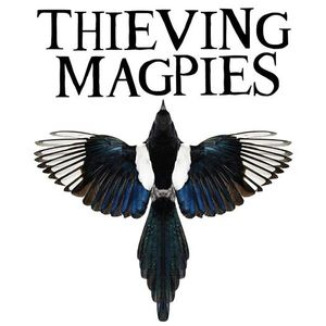 Thieving Magpies Live at Preston Street Working Mens Club