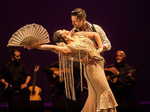 Flamenco Intimo  Julia Chacn Flamenco Theatre