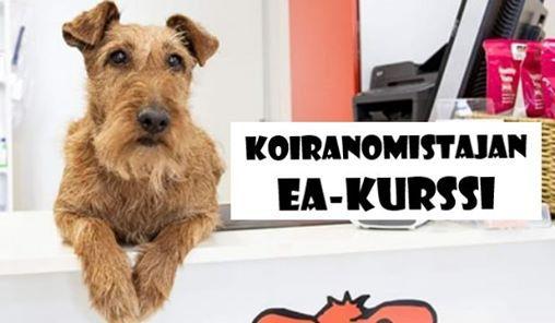 Koiranomistajan EA-kurssi