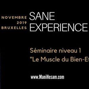 Sminaire SANE Exprience niveau 1  Bruxelles