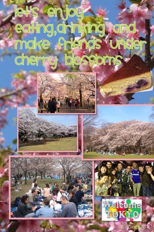 FreeCake International Hanami BIG Picnic Yoyogi park