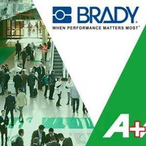 Brady at AA in Germany