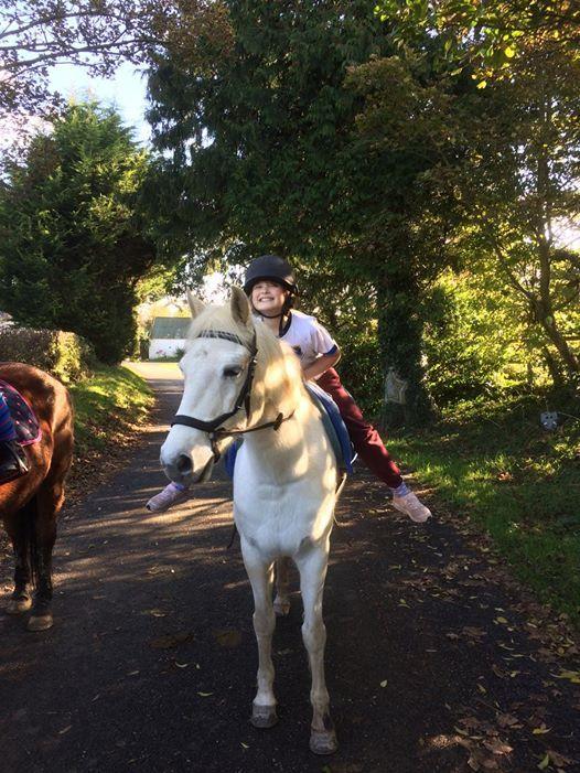 Mid Term Pony Camps