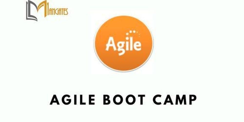 Agile BootCamp 3 Days Training in Berlin