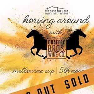 Horsing Around with Chaffey Bros. Melbourne Cup 2019