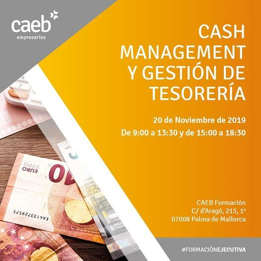 Cash Management y Gestin de Tesorera