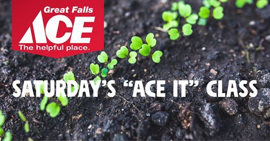ace hardware great falls