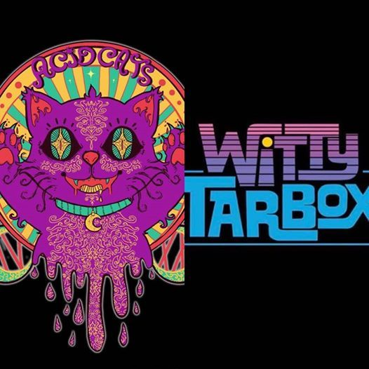 Witty Tarbox  Acid Cats at KRC