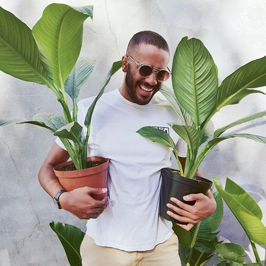How to be a better Plant Parent