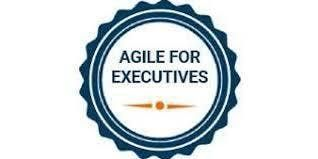 Agile For Executives 1 Day Training in Newcastle