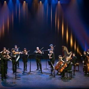 Ataneres Ensemble Strings in the house
