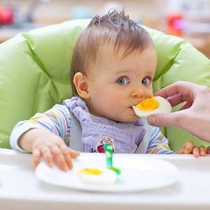 Introduo da Alimentao Complementar e Amamentao