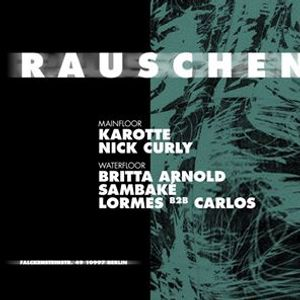 Rauschen with Karotte Nick Curly Britta Arnold and more