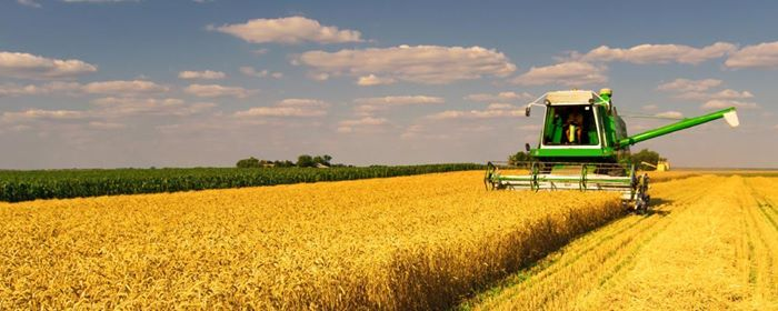 The State of Provincial Agriculture - A discussion with business