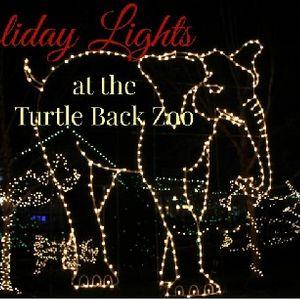 Turtle Back Zoo Christmas Lights 2019.4th Sunday Hike At Turtle Back Zoo