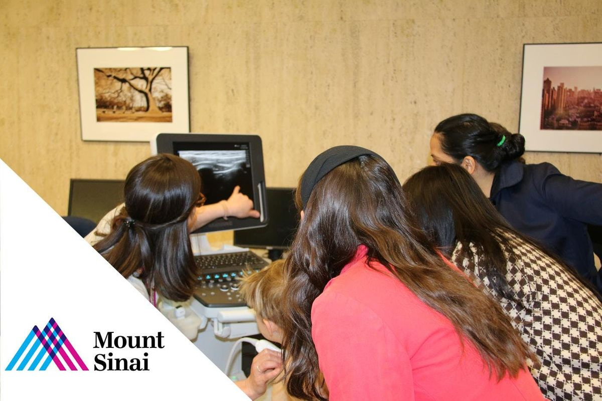 Mount Sinai Critical Ultrasound Course 2019