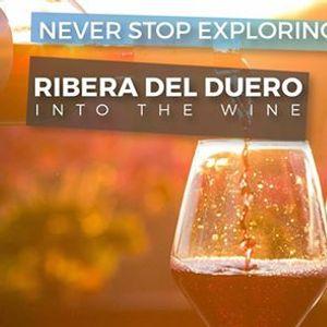 Ribera del Duero 2 - Into the Wine