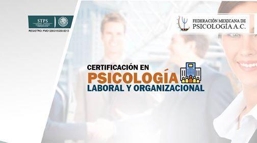 Psicologa Laboral y Organizacional - Certificacin