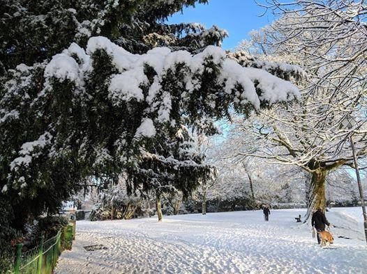 Wednesday Winter Wander