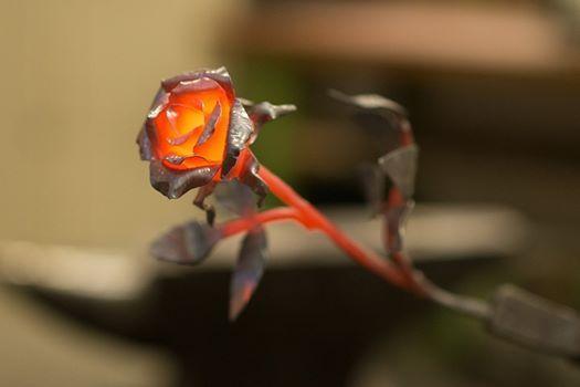 Weihnachten Special - Metall Rose