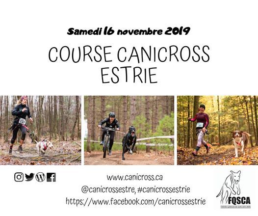 Calendrier Canicross 2019.Course Canicross Estrie 2019 At Base Plein Air Andre Nadeau