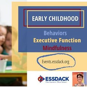 Early Childhood Behaviors Executive Function and Mindfulness