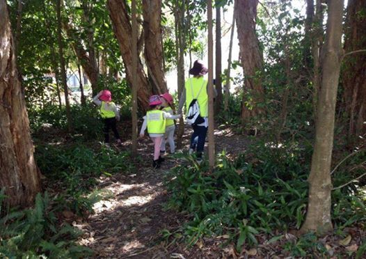 Nature Play Bus Tour - GC  Nth NSW