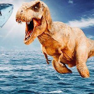 Dinoshark. Bthune