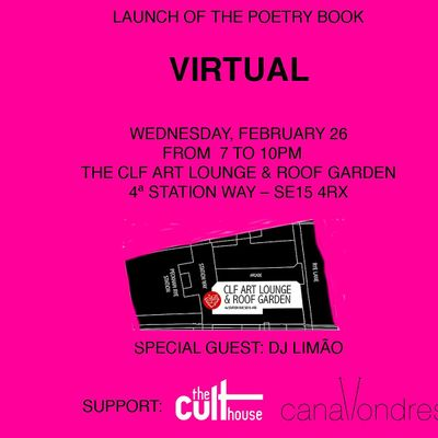 Book launch of VIRTUAL by Silvino Ferreira Jr. - by The Cult House
