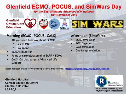 ECMO and SimWars Day