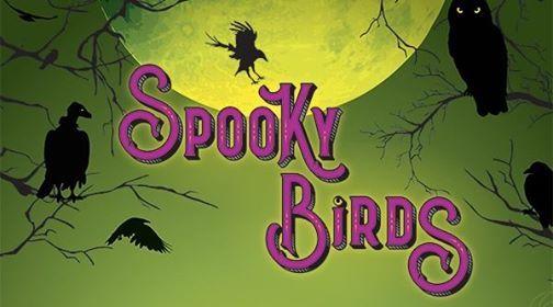 Spooky Birds