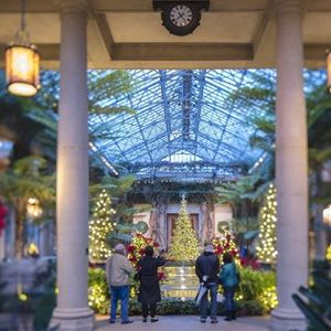 Trips & Tours A Beautiful Holiday at Longwood Gardens