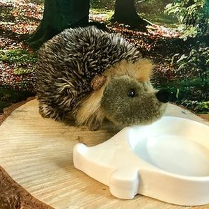 Hedgehog Feeders