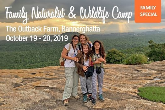 Family Naturalist & Wildlife Camp